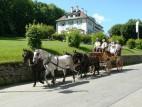 Transport zum Schloss: Entweder man geht ca. 30 Min. zu Fuss, 5 Min. mit dem Bus oder man fahrt ganz