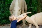 Ein Küsschen für Parasaurolophus