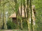 Burg Hülshoff - Parklandschaft